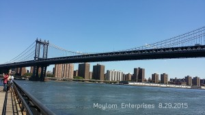 View from Brooklyn Bridge Park || Image source: Moylom Enterprises original photo